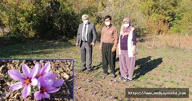 Kadın üreticilerin proje alanına ziyaret