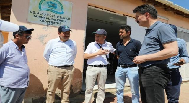 Alpuda binlerce ton yem bitkisinin paketleneceği proje onaylandı