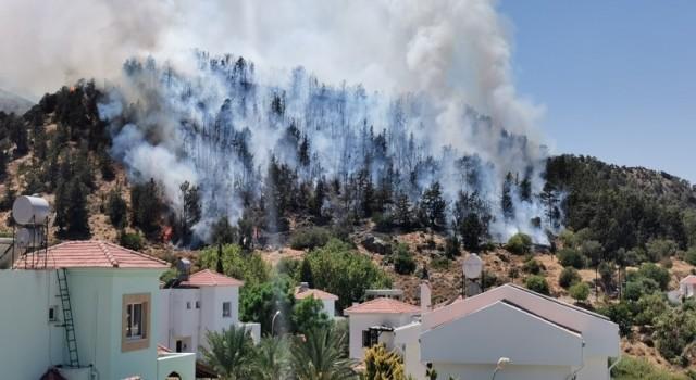 KKTC'de ormanlık alanda yangın