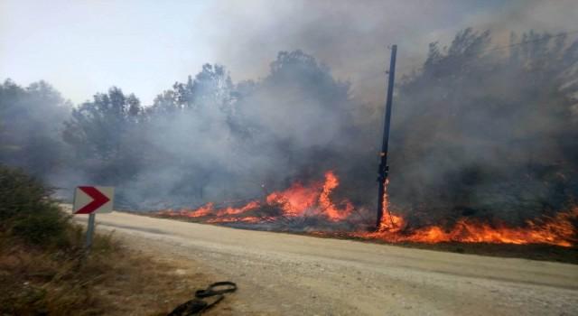 Osmaniyede orman yangını büyümeden söndürüldü
