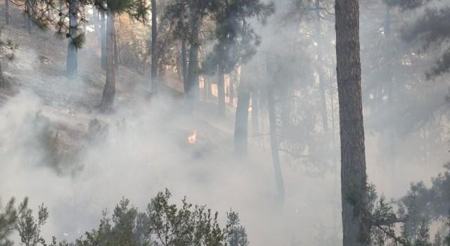Tavastaki yangın kısmen kontrol altına alındı