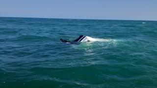 Adana'da denizde alabora olan teknedeki 4 kişi kurtarıldı