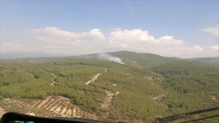 Osmaniye'de çıkan orman yangınına müdahale ediliyor