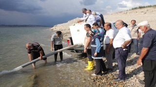 Osmaniye'de Aslantaş Baraj Gölü'ne 132 bin sazan yavrusu bırakıldı