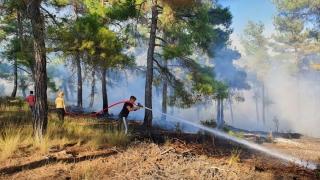 Tarsus'ta çıkan orman yangını kontrol altına alındı