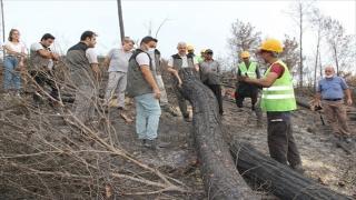 Adana Orman Bölge Müdürü Mahmut Yılmaz, Osmaniye'deki yangında yanan alanları inceledi