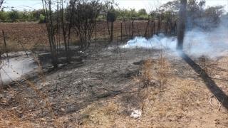 Adana'da ağaçlık alanda çıkan yangın söndürüldü