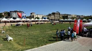 Gaziantep'te Aşırtmalı Aba Güreşi Türkiye Şampiyonası yapıldı