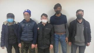 Osmaniyede Afgan uyruklu 5 göçmen yakalandı