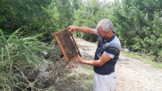 400 kovan arısı sele kapıldı, zararı 1 milyon lira