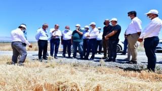 Çınar, tarımsal üretim sahasındaki faaliyetleri inceledi