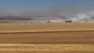 Diyarbakırda çıkan yangında 200 dönümlük buğday tarlası küle döndü
