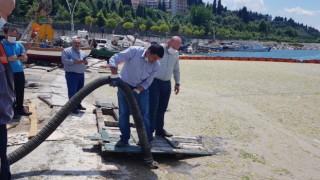 Düzce Belediyesi Marmara Denizinde musilaj temizliği yaptı