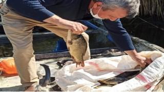 Eğirdir Gölünde kaçak ava 19 bin 856 lira para cezası