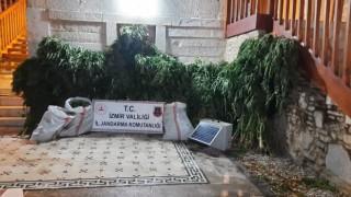 İzmirde jandarmadan 9 ilçede uyuşturucu operasyonu