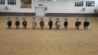 JAKEMde eğitilen atlar Türkiyenin çeşitli illerinde emniyet ve asayişi sağlıyor