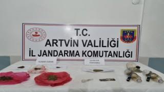Jandarma Artvinde kubar esrar yakaladı