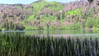 Korona yasaklarının ardından Borçka-Karagöle yoğun ilgi