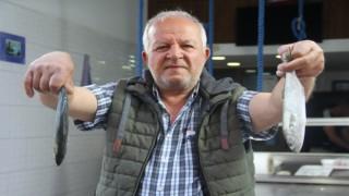 Marmaradaki müsilajdan kaçan çinekop Sinopta tutuldu