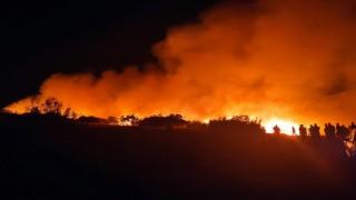 Nizipte orman yangını