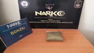 Orduda uyuşturucu operasyonu: 1 tutuklama