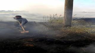 Şanlıurfada tarlada anız yakılması elektrik direklerine zarar verdi