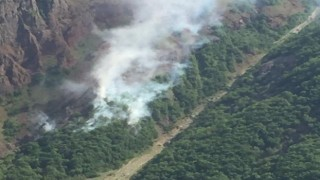 Tuncelide orman yangını, ekipler müdahale ediyor