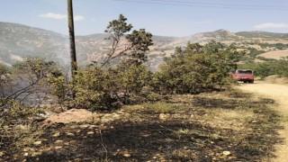 Tuncelide ormanlık alanlardaki yangınlar söndürüldü