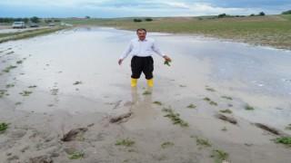 Yozgatta sel ekili tarım alanlarına zarar verdi