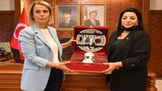 Azeri vekilden Vali Becele ziyaret