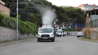 Kartalda her gün 7 mahalle, sivrisinek ve haşerelere karşı ilaçlanıyor