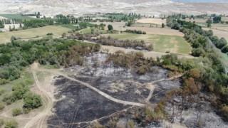 """Nallıhan Belediye Başkanı Öntaş: """"Kuşlarımızın yaşadığı bölgeye yangın sıçramadan önledik"""""""