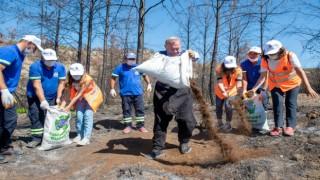 Aladağda yanan tarlalara kompost gübre