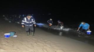 Bartında balıklar sahile vurdu