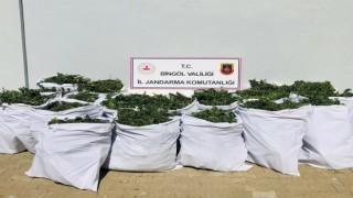 Bingölde uyuşturucu operasyonu: 4 gözaltı