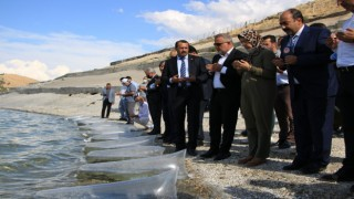 Elazığda 21 bin ton balık üretimi