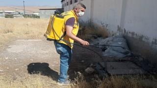 Haşerelerle mücadele çalışmaları Siirt genelinde devam ediyor