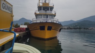 Karadenizde balık bolluğu yaşanıyor