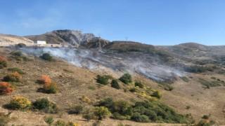 Kop Dağında çıkan örtü yangını kontrol altına alındı
