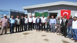 Muşun Malazgirt ilçesinde pancar alım kampanyası başladı