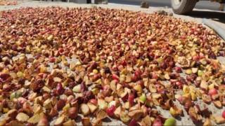 Şırnak ve Hakkari köylerinde kışa hazırlık başladı